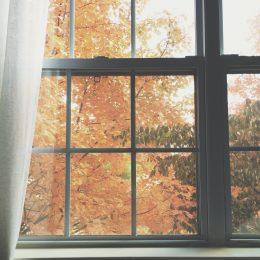 Fenêtre sur bois